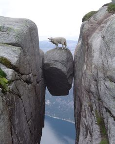 Ever been between a rock and a hard place?